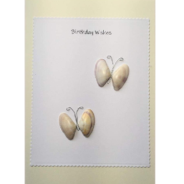 Two shell butterflys, white rectangle background on yellow card -  Size: 7x5 - Greeting: Birthday Wishes